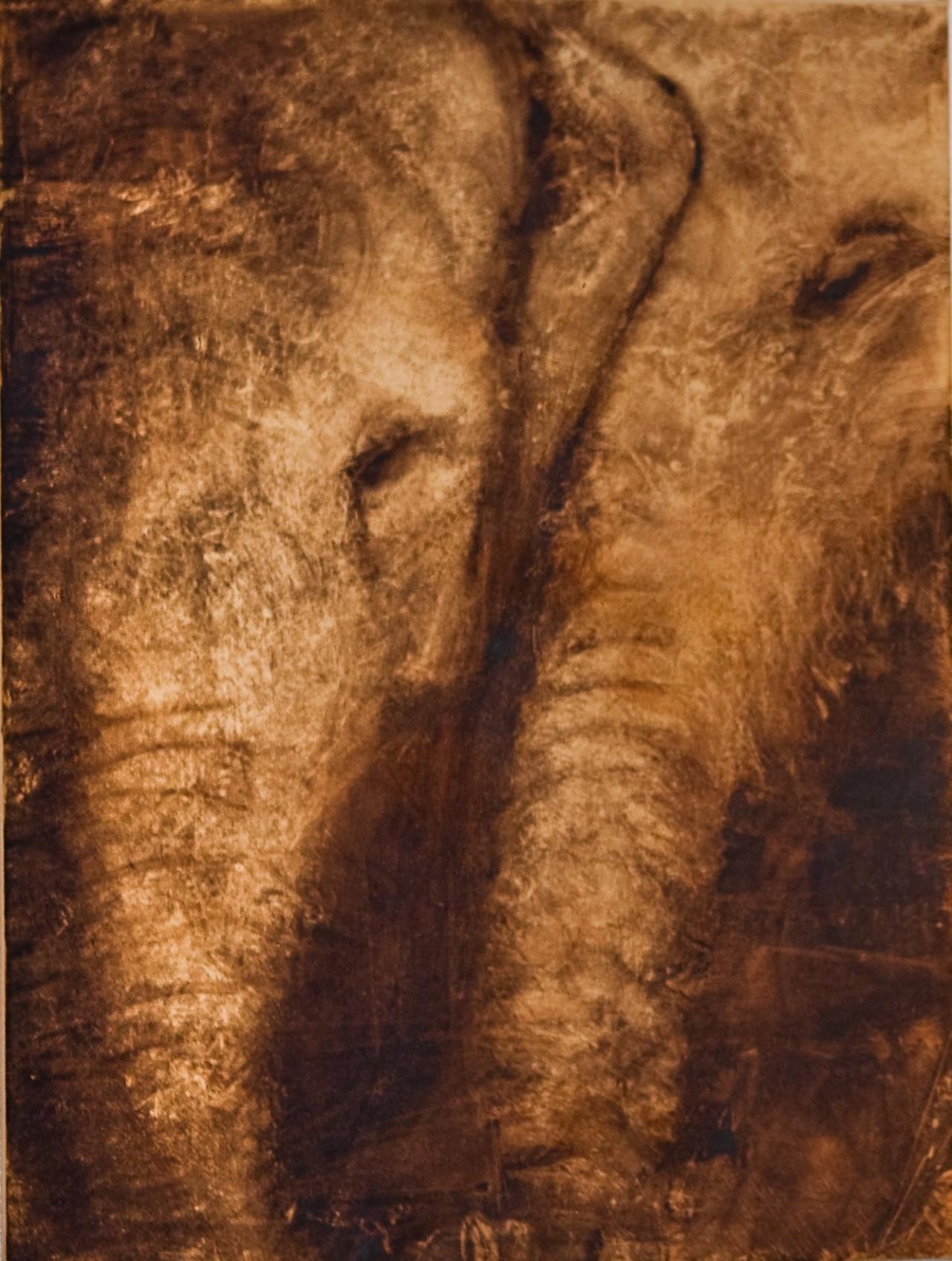 Virginia Isbell Éléphants